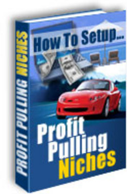Product picture Profit Pulling Niches